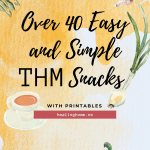 THM Snacks pinable image