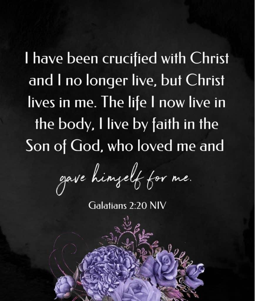 Galatians scripture
