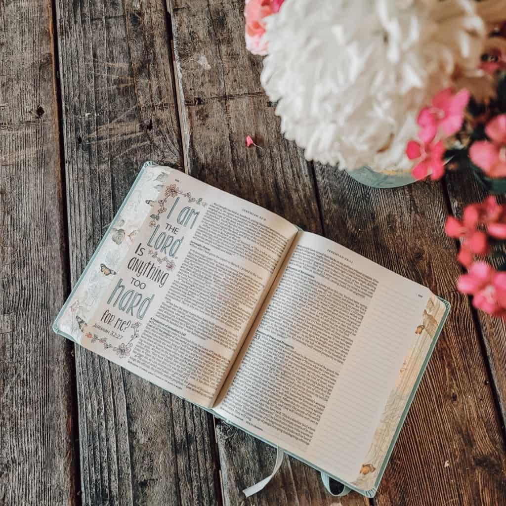 Inspire Bible image