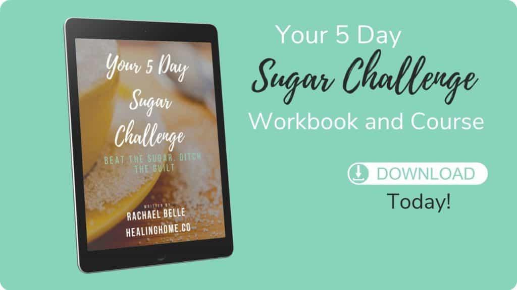 sugar free challenge workbook